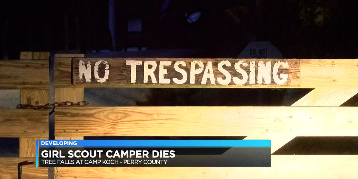 Girl Scout dies after fallen tree incident at Camp Koch, others injured