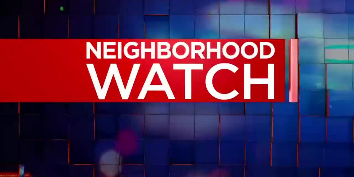 Neighborhood Watch: Theft suspect caught on camera