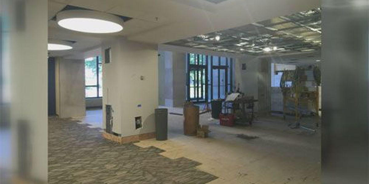 Library renovations, new greenhouse to improve landscape of UE campus