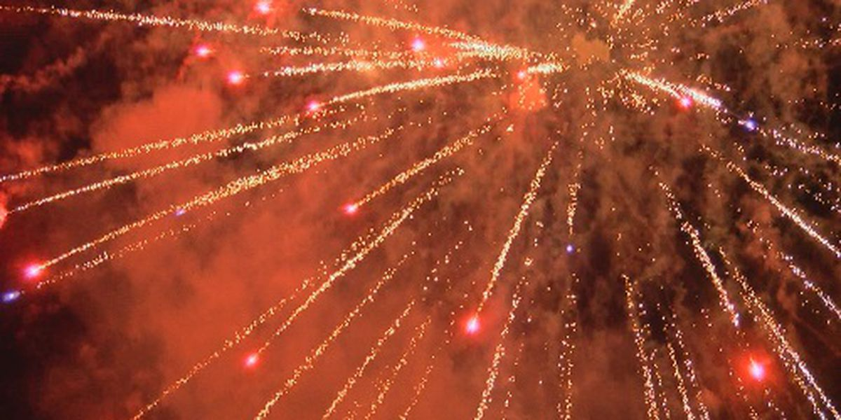 Lions Club of Mt. Vernon hope to raise money for future fireworks