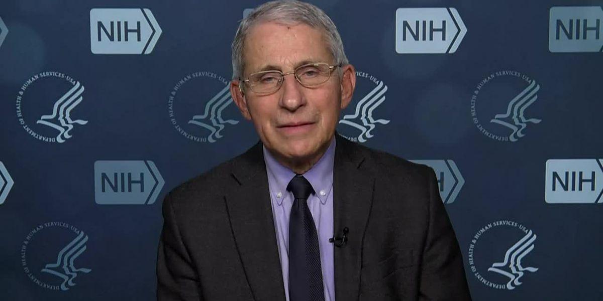 US virus numbers drop as new variant found in Minnesota