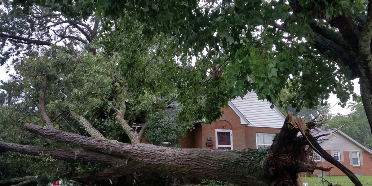 Sun. evening storm causes damage throughout Tri-State, thousands without power