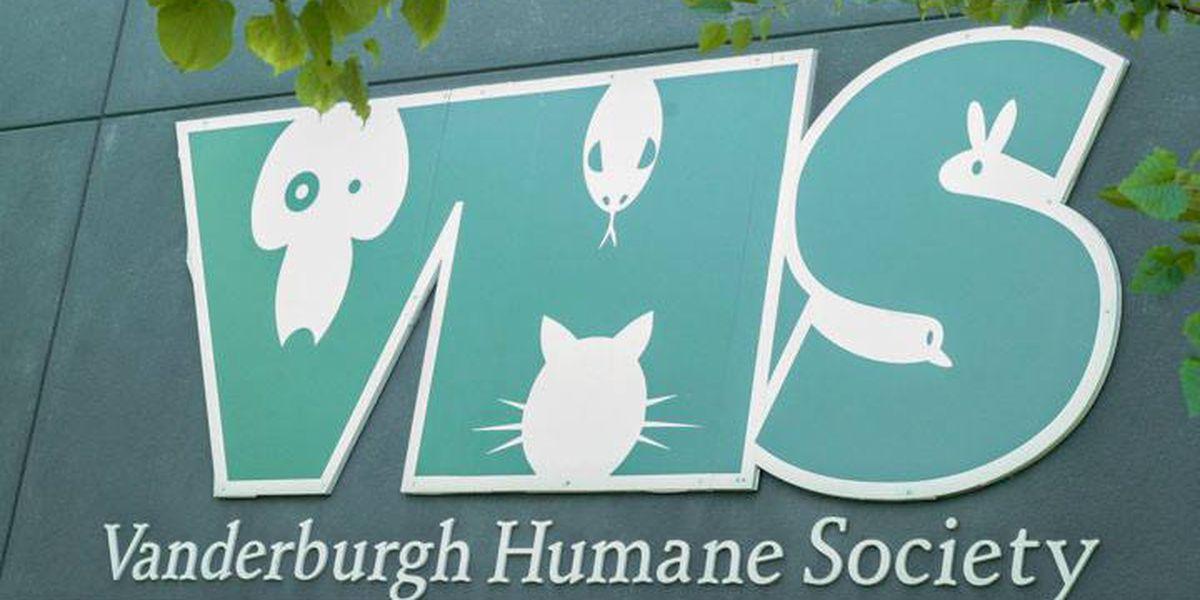 Help the Vanderburgh Humane Society win $25,000