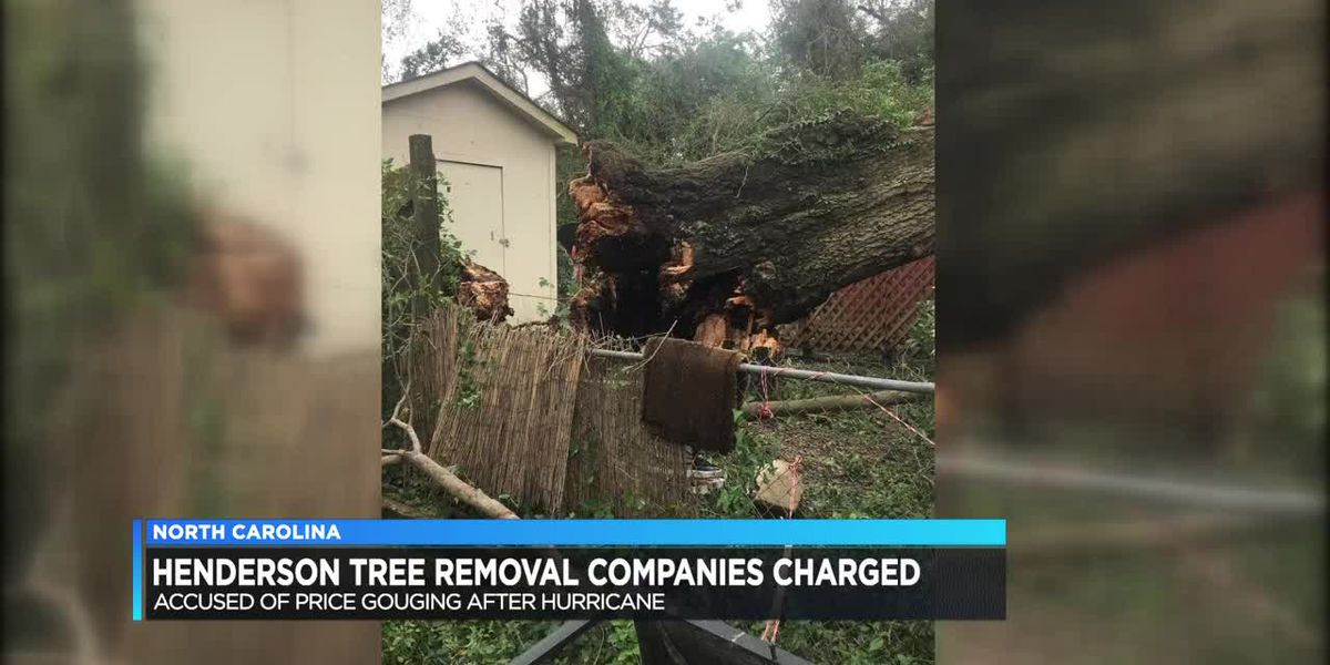 Henderson companies accused of price gouging during NC hurricane cleanup