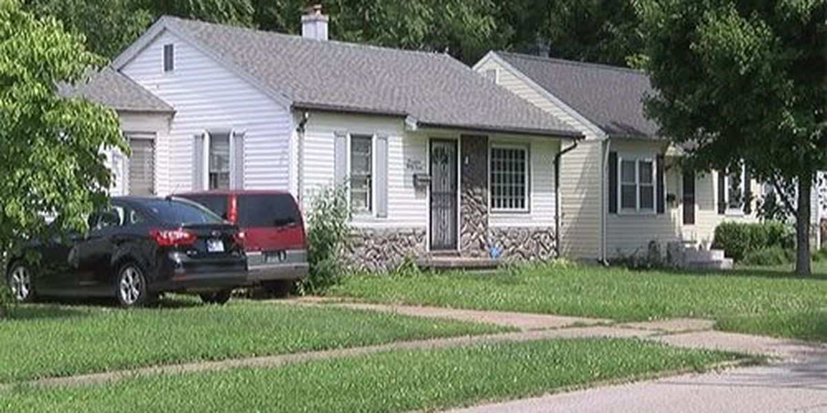 Two dogs removed from Evansville home