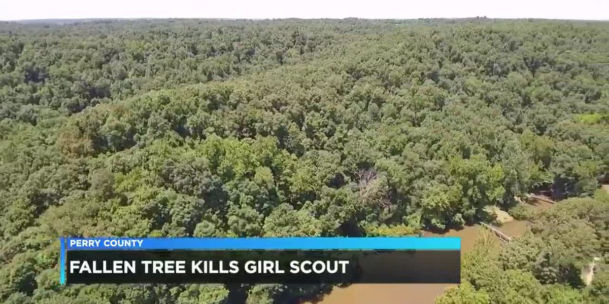 Dispatcher speaks with 14 News about the call for help after Girl Scout killed at camp