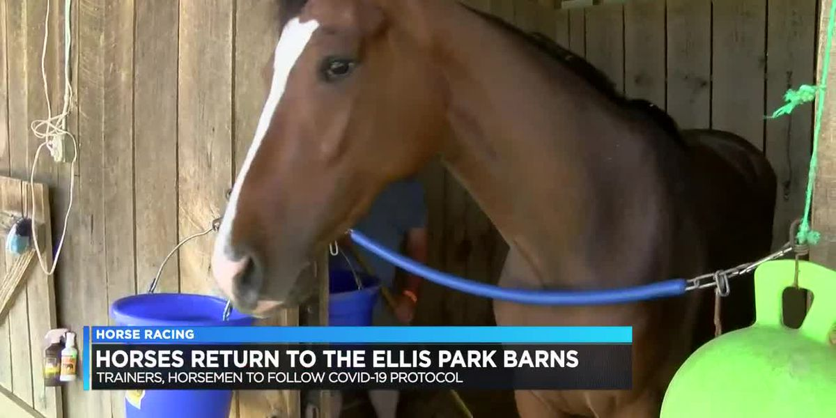 Horses start arriving at Ellis Park as raceday quickly approaches