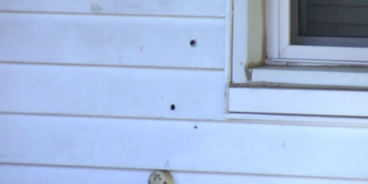 Police investigating after bullets hit Henderson home