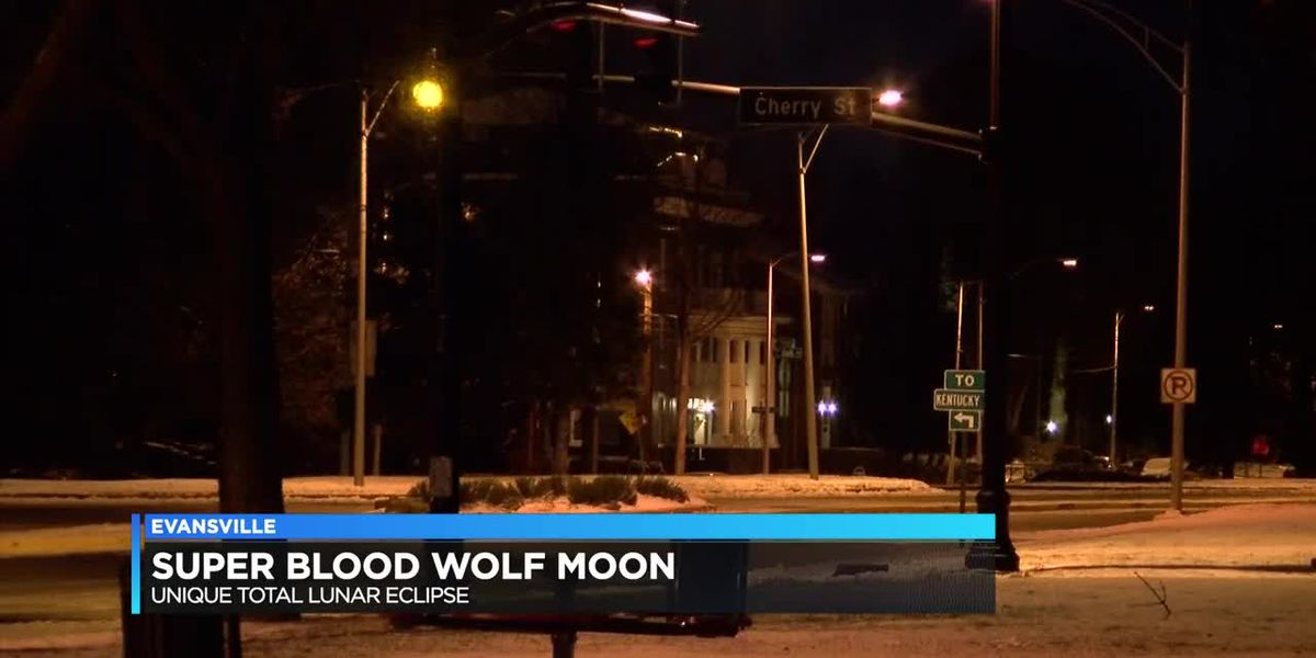 Super Blood Wolf Moon watch party canceled, people still show up