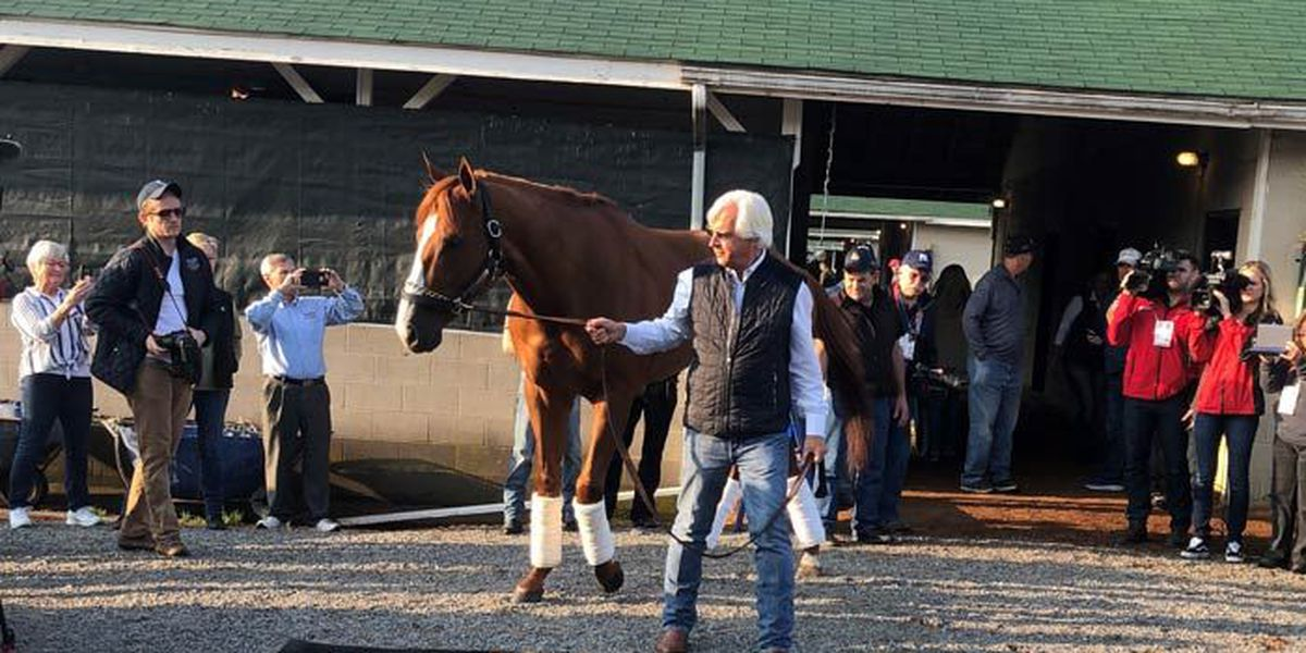 Justify failed drug test before winning Triple Crown, according to report