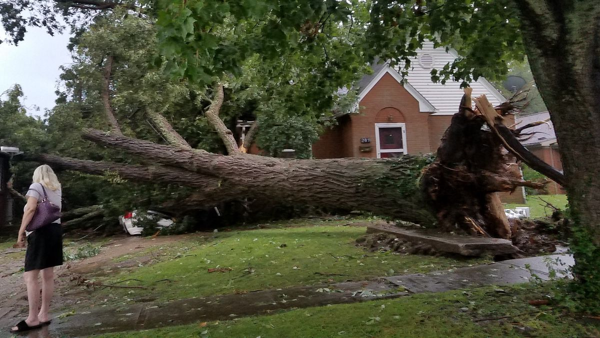 Storm causes damage in Grayville
