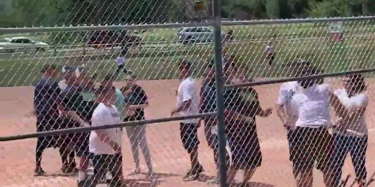 Parents, coaches brawl at youth baseball game in Colorado