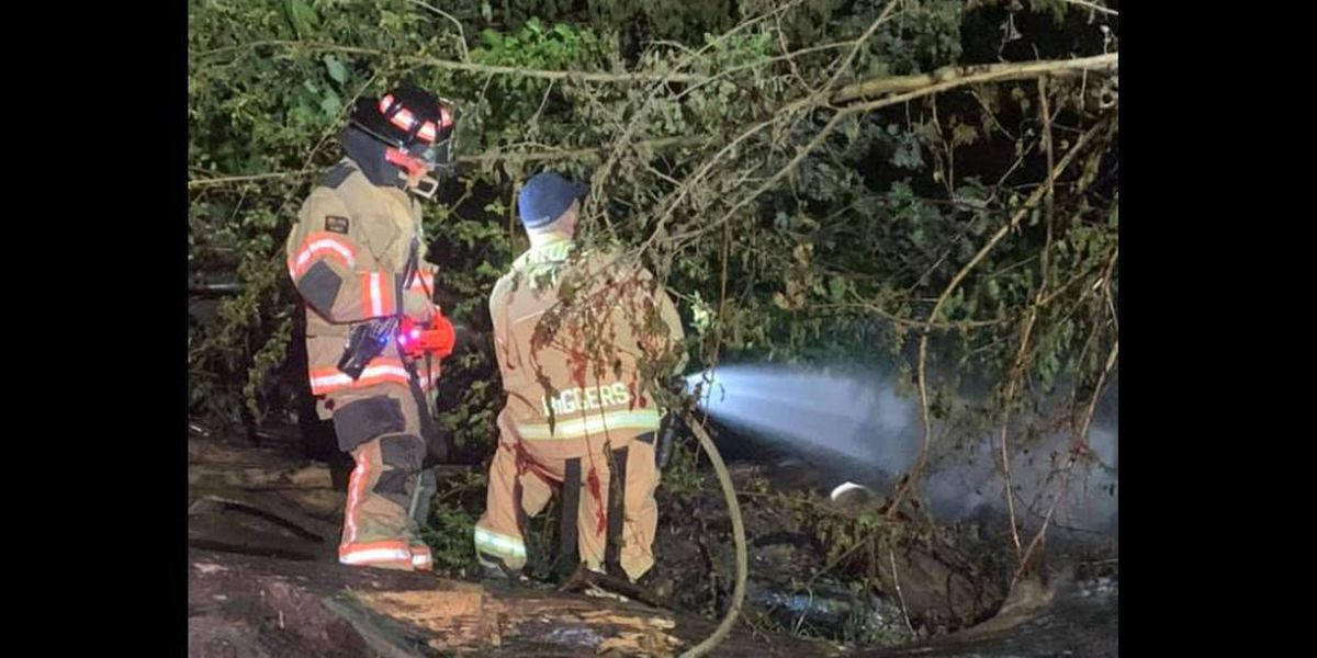 Authorities investigating following wildland fire in Henderson Co.