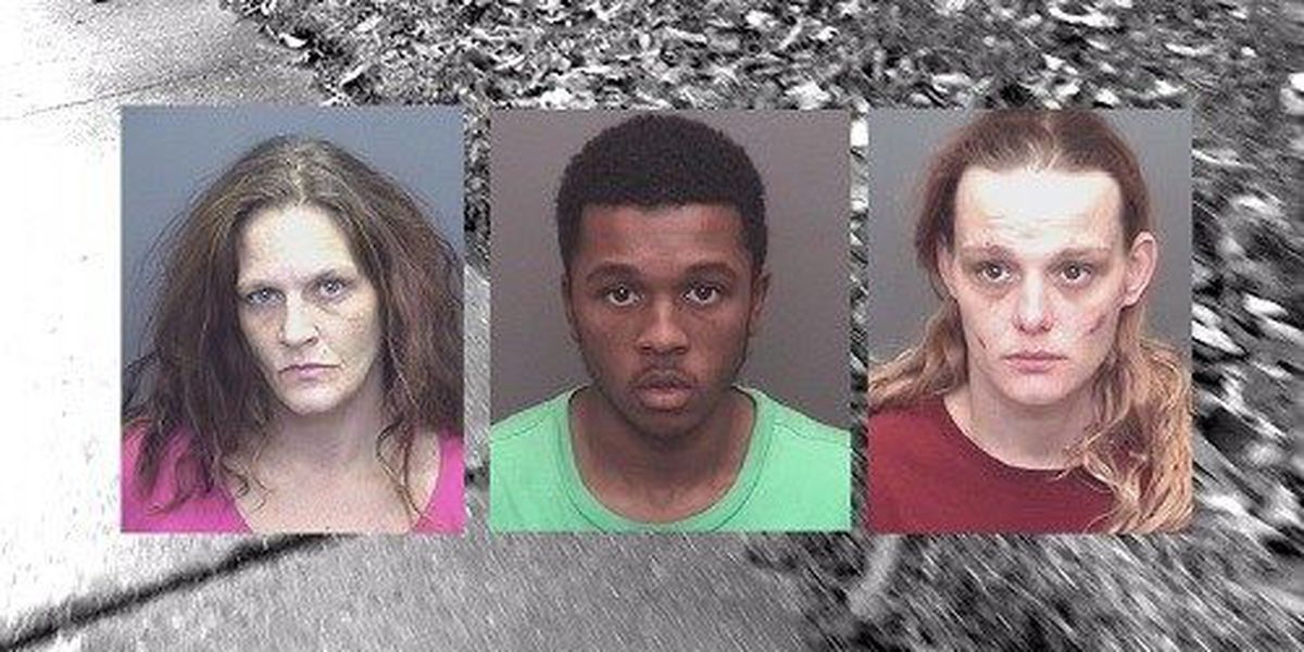 Fingerprint and social media video lead authorities to arrest four people in sheriff's home burglary