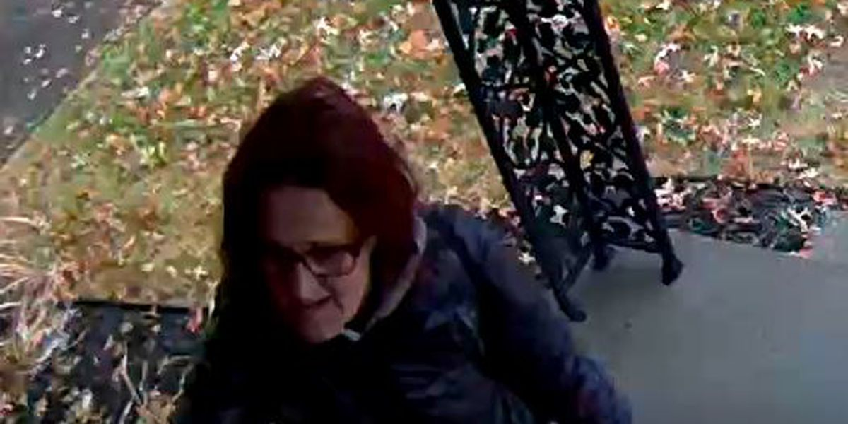 Police: Evansville 'porch pirate' caught, others to follow