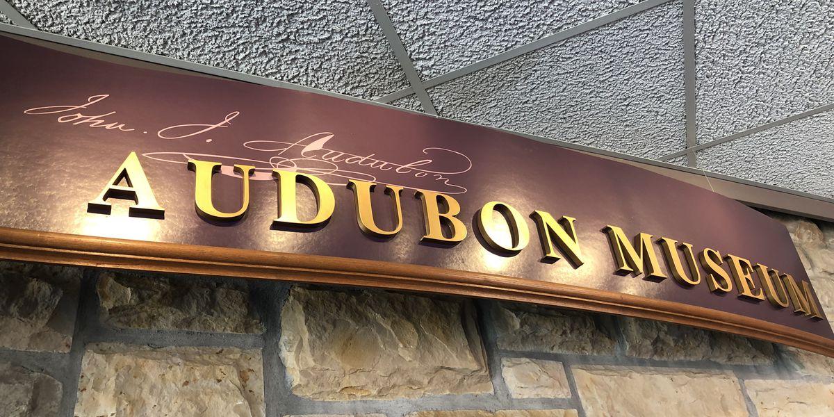 Henderson's Audubon Park set to receive much-needed repairs