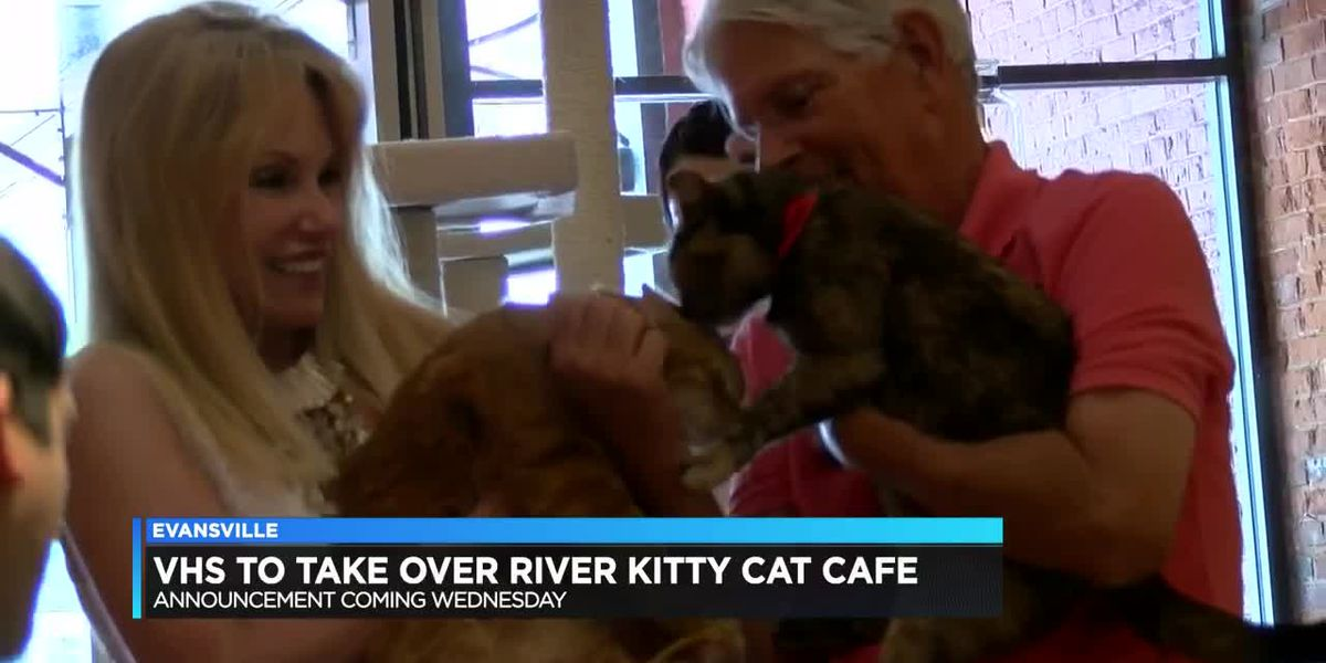 Vanderburgh Humane Society taking over River Kitty Cat Cafe