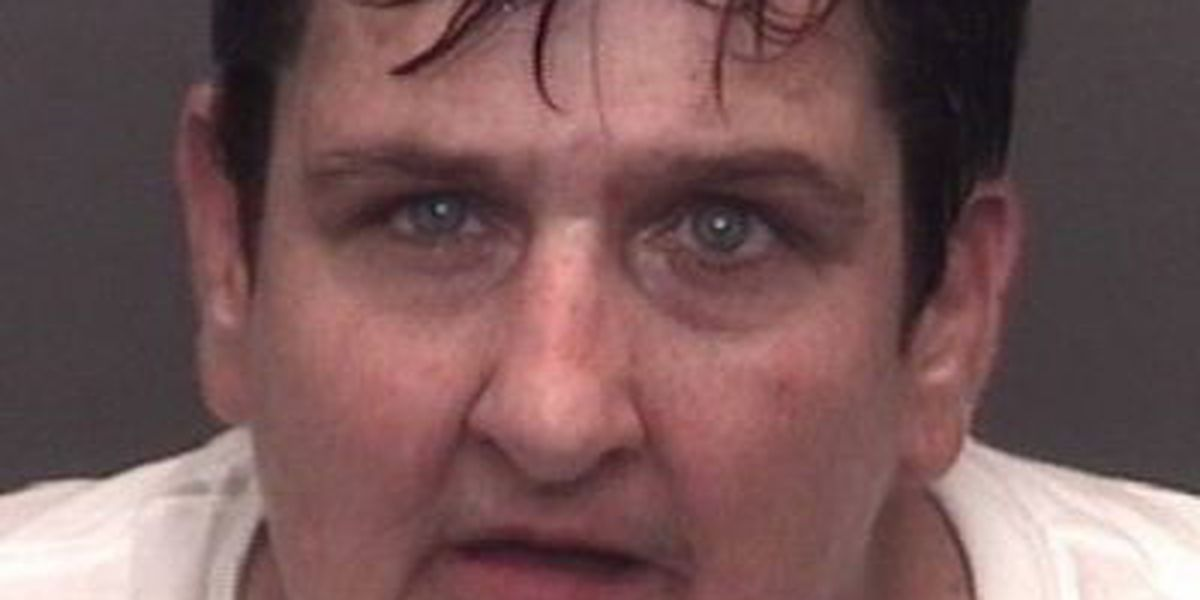 Wollner pleads guilty in false confession beating case