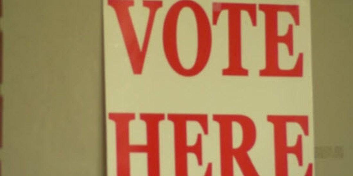 DECISION 2018: Henderson mayor
