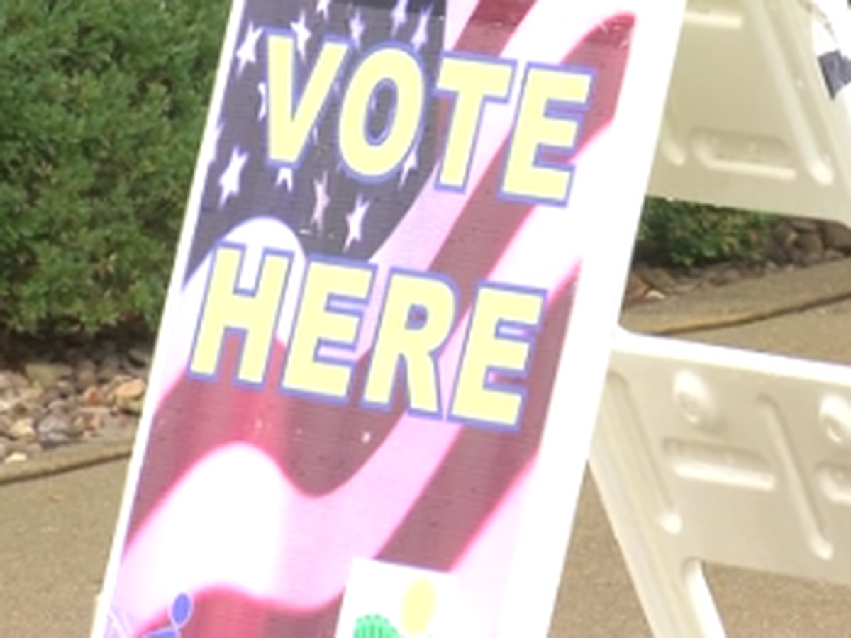 Early voters see big turnout in Warrick Co.
